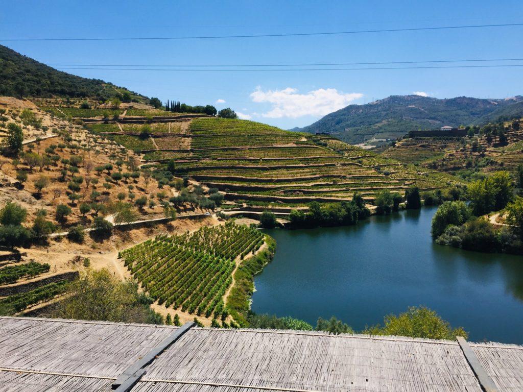 Mit einem Tesla durch das Douro Tal in Portugal zur Weinprobe 10 CBF7A4A0 BF90 4B02 87D2 7FA74D37B268