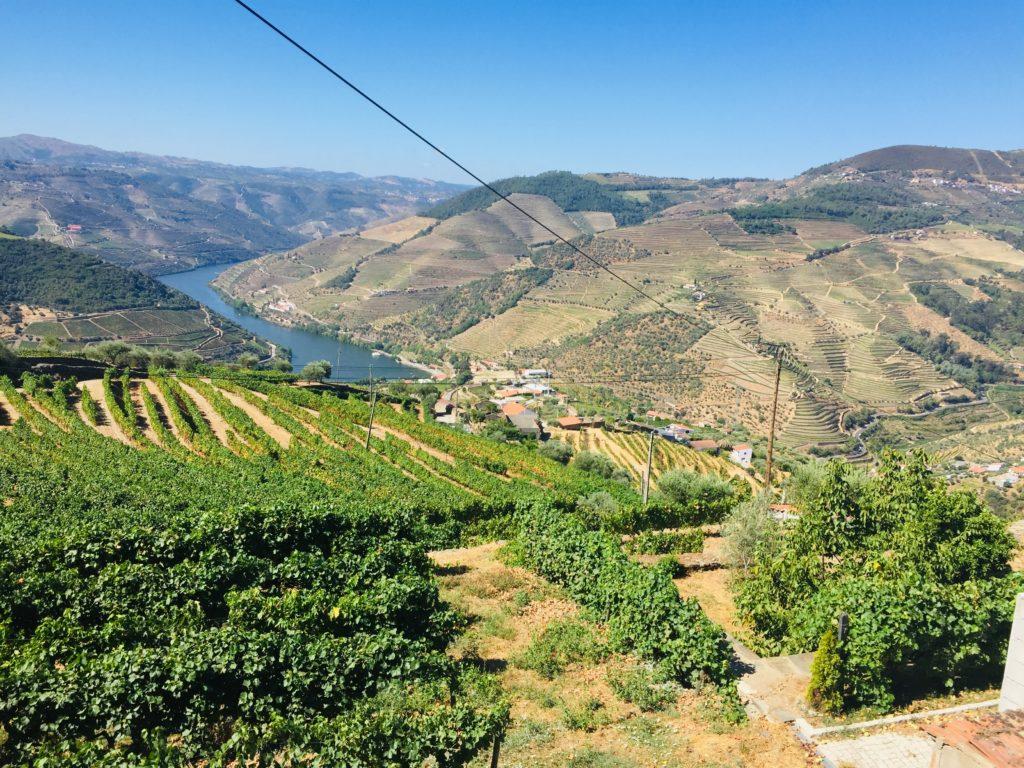 Mit einem Tesla durch das Douro Tal in Portugal zur Weinprobe 2 Skype Picture 2020 08 21T13 23 24 533Z