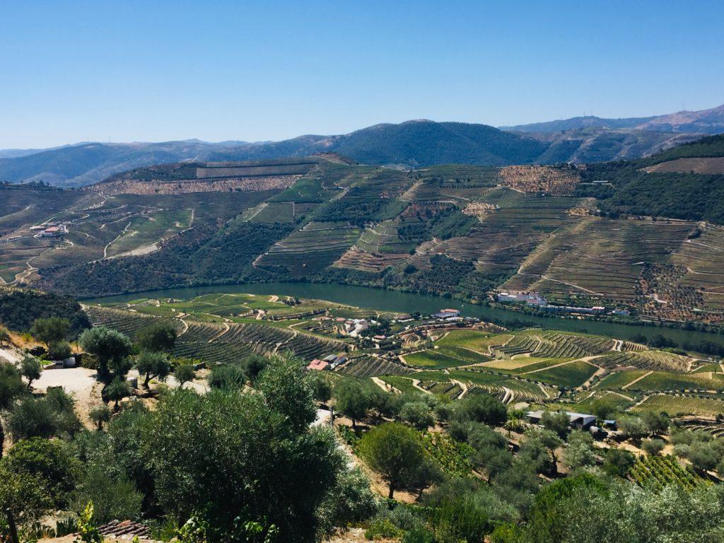 Mit einem Tesla durch das Douro Tal in Portugal zur Weinprobe 6 Skype Picture 2020 08 21T13 24 16 777Z