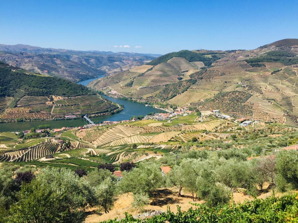 Douro Tal Portugal Weinprobe