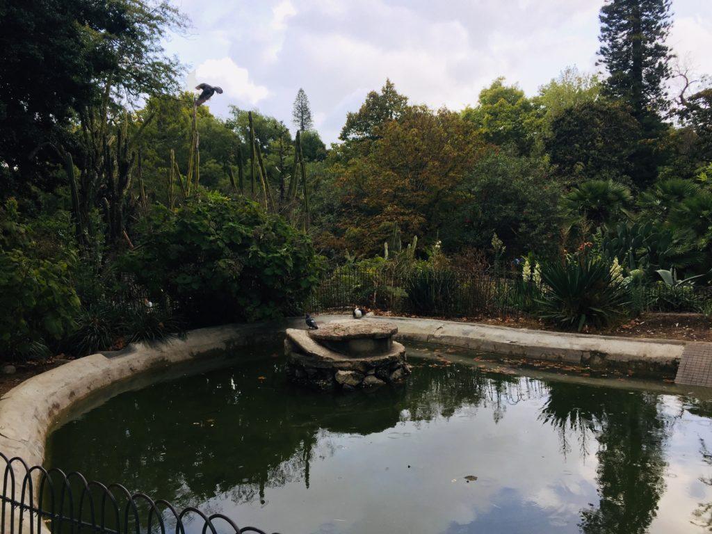 Estrela und Lapa - Leben in Lissabon 5 Jardim Estrela 2