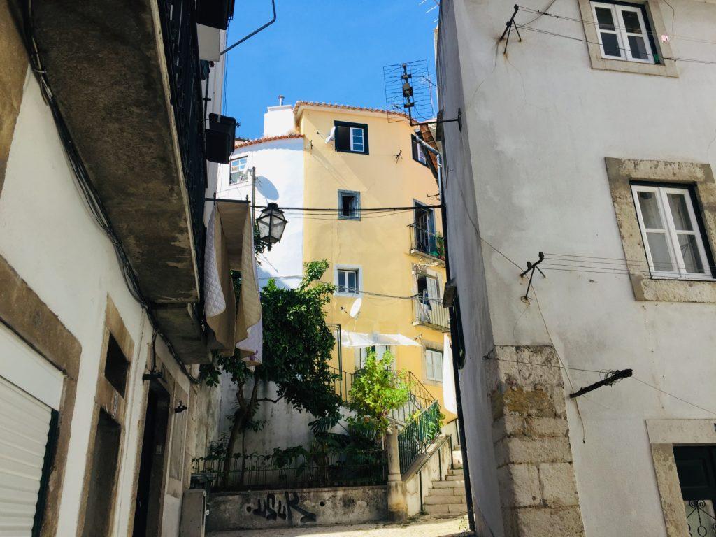 Lissabon - Führung durch das Stadtviertel Alfama, São Vicente und Graca 7 Skype Picture 2020 09 12T19 44 20 747Z