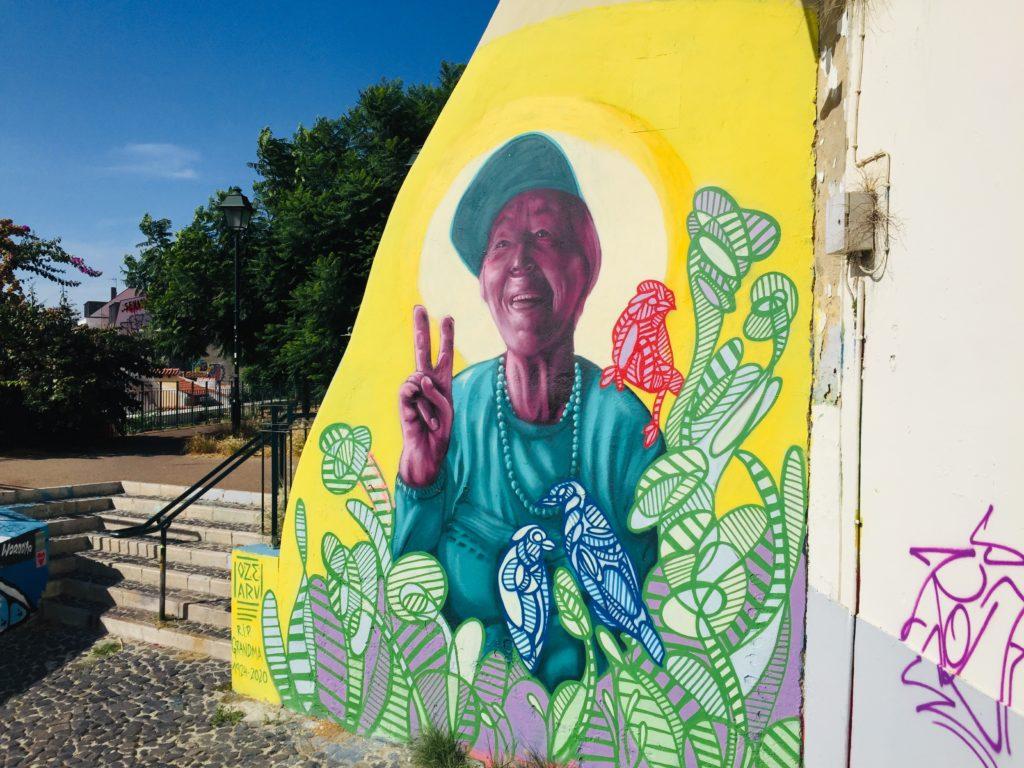 Lissabon - Führung durch das Stadtviertel Alfama, São Vicente und Graca 14 Skype Picture 2020 09 12T20 01 52 527Z