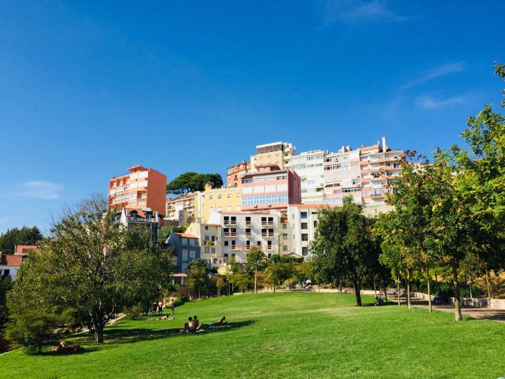 Lissabon - Führung durch das Stadtviertel Alfama, São Vicente und Graca 18 Skype Picture 2020 09 12T20 03 04 167Z