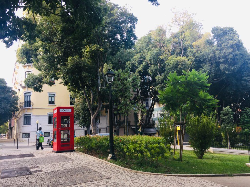 Leben in Lissabon im Viertel Alcântara 5 Skype Picture 2020 09 12T22 57 43 089Z