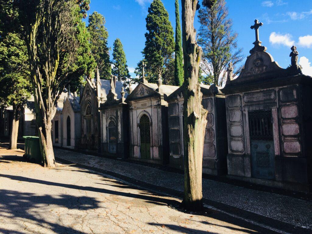 Lissabon in Portugal - Wie es fast keiner kennt 15 Friedhof